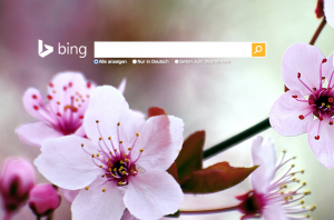 Das neue Bing-Feature Bing Interests ist da