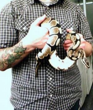Googleplex Python Kaiser found