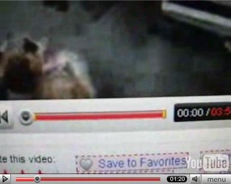 YouTube Video Ads wird in der Statuszeile des Videos gelb hevorgehoben, zum Beginn und Ende des jeweiligen YouTube Videos, welches auch Video Ads enthält